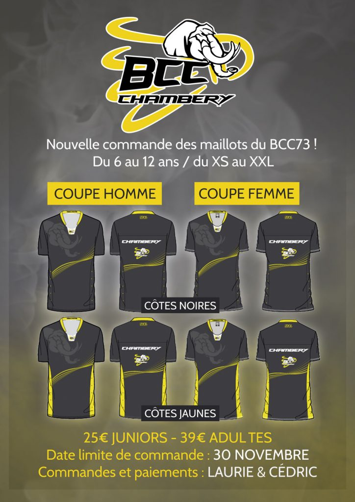 AFFICHE MAILLOTS-2016